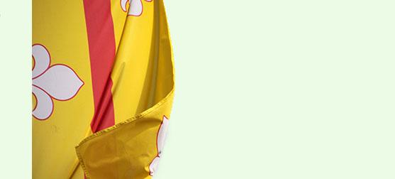 vlag loenen