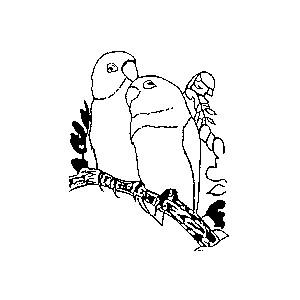 vogelvereniging ons genoegen, logo