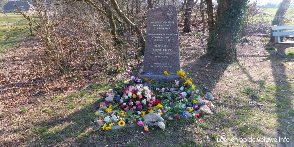 monument davidster