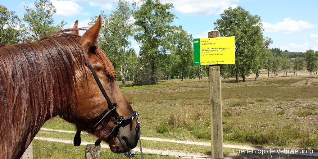 paardrijden loenermark